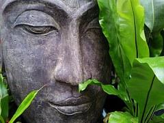 Eine kleine, einfache Meditation